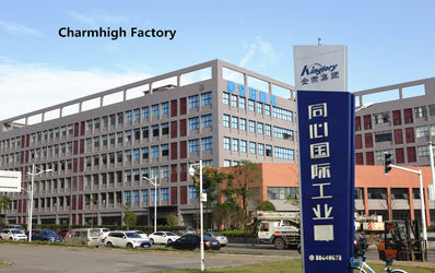 CHARMHIGH  TECHNOLOGY  LIMITED